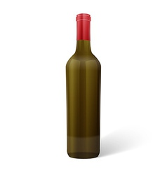 Glass wine bottle vector image