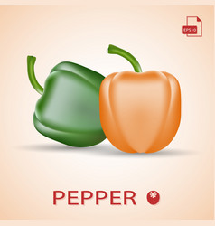 set of two fresh sweet peppers green and orange vector image
