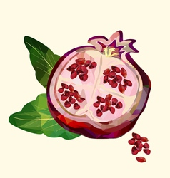 pomegranate polygon vector image