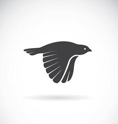 Image of an bird icon vector