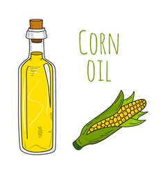 Colorful hand drawn corn oil bottle vector