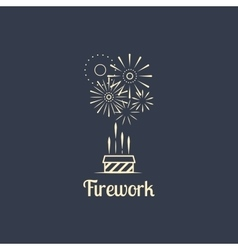 Firework company logo on dark background vector image vector image