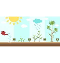 Flat background of planting tree process vector
