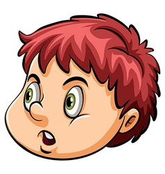 A head of a young boy vector image