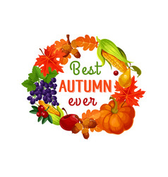 Autumn leaf harvest vegetable and fruit poster vector