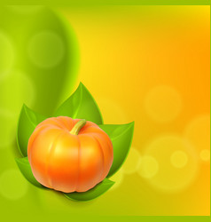 Background with pumpkin in leaves vector