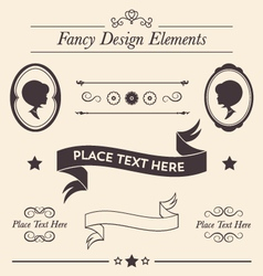 Fancy design elements collection vector
