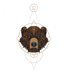 muzzle bear for creating sketches of tattoos vector image vector image