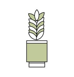 Plant in vase vector