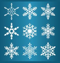 snowflakes winter season christmas snow vector image