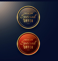 Special offer label design set vector