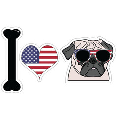 I love pug with american symbols vector