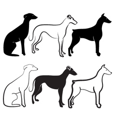 Dogs silhouettes logo vector image vector image