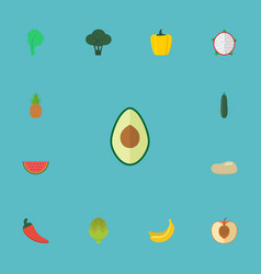 Flat icons cabbage ananas jungle fruit and other vector