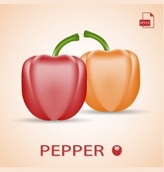 set of two fresh sweet peppers red and orange vector image vector image