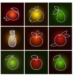 Tropical citrus fruit icons vector