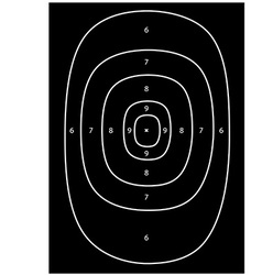 Shooting target vector image