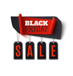 Black friday sale abstract banner isolated on vector