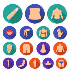 Part of the body limb flat icons in set vector