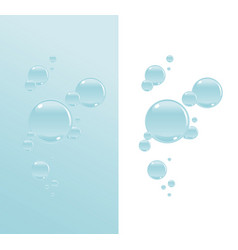 Transparent water bubbles vector
