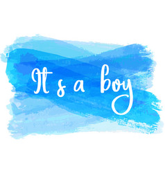 Baby gender reveal vector