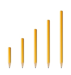 Yellow wooden sharp pencils vector