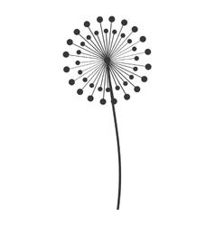 dandelion seed decoration icon vector image