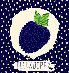Blackberry hand drawn sketched fruit with leaf on vector