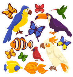 Exotic birds tropical fishes and butterfly vector