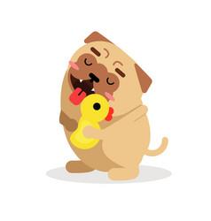 Funny cartoon pug dog character hugging yellow vector
