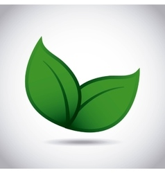 Ecology leafs green icon vector
