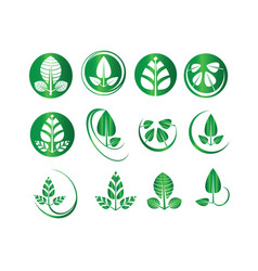 green leaf set round circle ecology icons vector image vector image