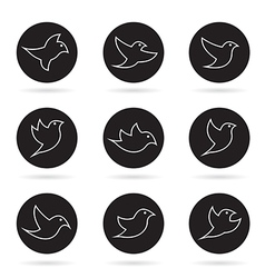 group of bird in the circle vector image vector image