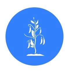 Peas icon black single plant icon from the big vector