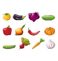 pixel art vegetables on white vector image