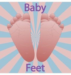 Baby feet vector image