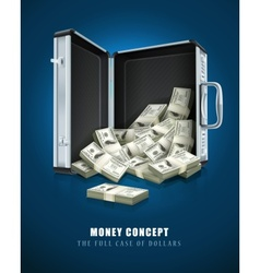 Case with dollars money vector