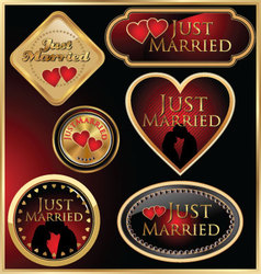 Just married golden labels vector image