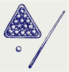 billard cues and balls vector image