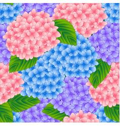 Blue pink and purple hydrangea flower seamless vector