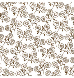 Brown silhouette pattern of daisy flowers with vector