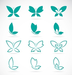 group of butterfly vector image vector image
