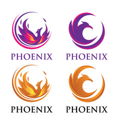 Luxury phoenix logo vector
