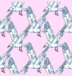 gull flight bird and seabird sea isolated on vector image