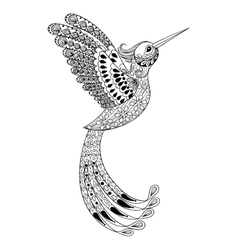 Zentangle hand drawn artistically hummingbird vector