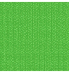 Green texture fabric backgroud vector