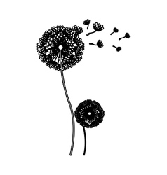 Black silhouette couple dandelion and fly petals vector