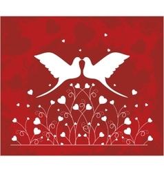 Pair of doves in love vector image