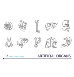 Thin line icons - artificial organs vector