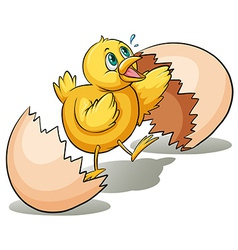 An egg hatching vector image vector image